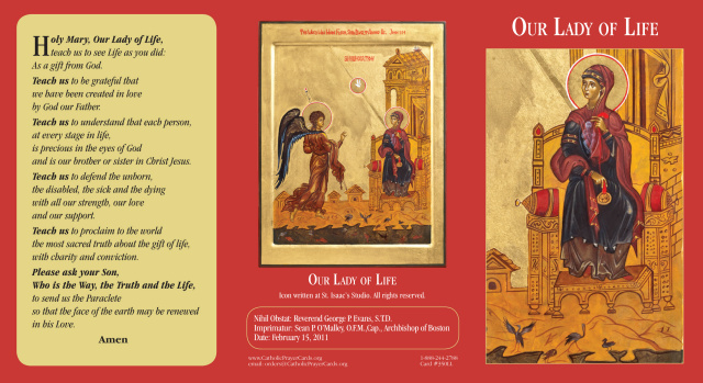 Our Lady of Life Tri-fold Prayer Card (English/Spanish)