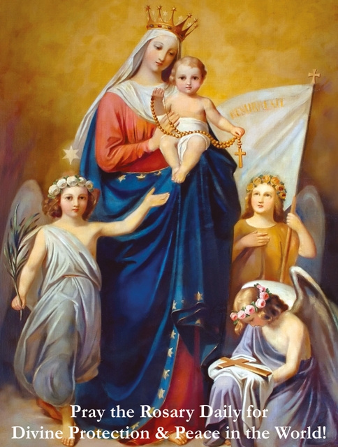 Pray the Rosary for Divine Protection Holy Card