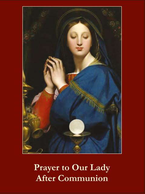Prayer to Our Lady After Communion Holy Card